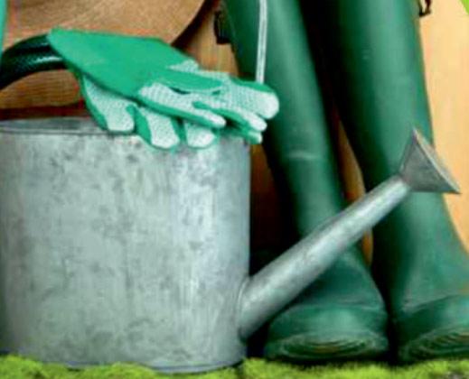 Aide au jardinage à domicile